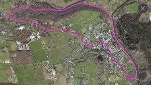 Map of Dog Walk