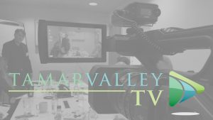 Tamar Valley TV with Background