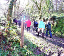 COTEHELE CIRCULAR V1 (April) – Walk & Talk