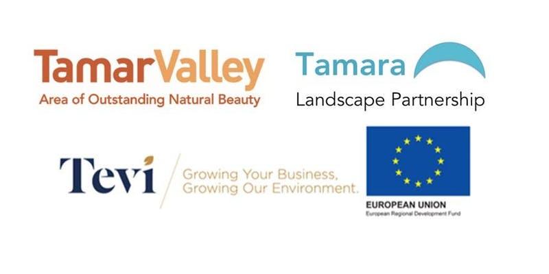 Tamar Valley Centre Logo