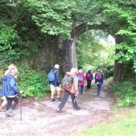 Yelverton – Walk and Talk